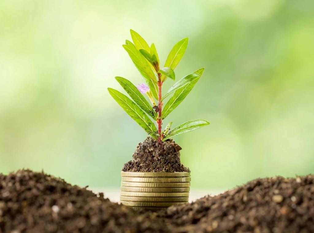ESG Sustainable Investing Gold Coast