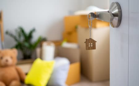 As rates hit rock bottom, is now a good time to fix part of your mortgage? – The New Daily