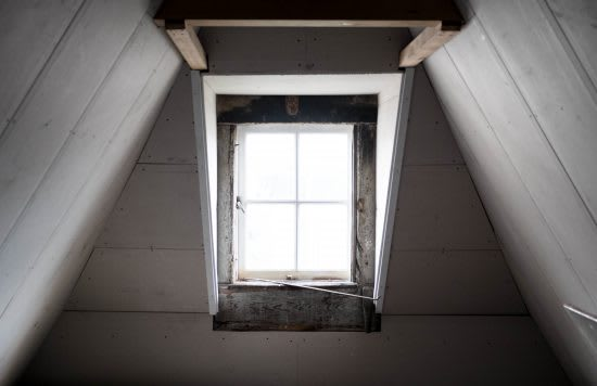 Attic, Basement, Crevices, and Crawl Spaces