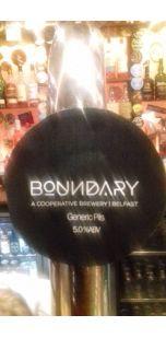 Boundary Generic