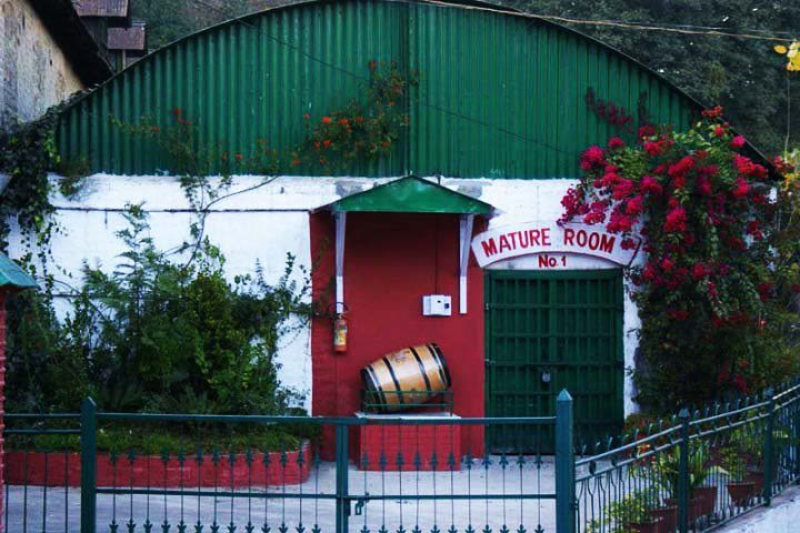 Top 7 Places To Visit in Kasauli, Visiting Places,Kasauli ...