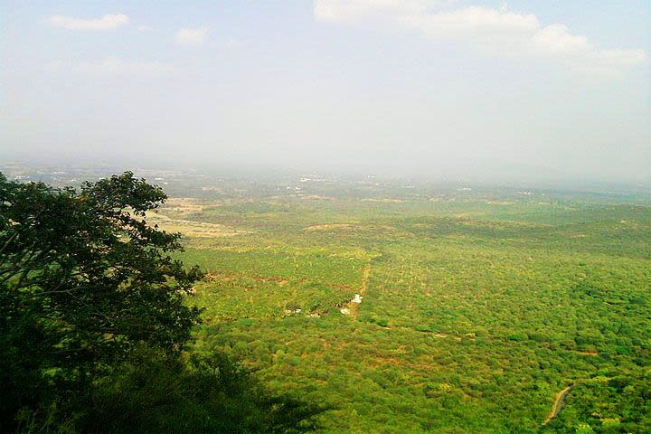 Sirumalai Reserved Forest