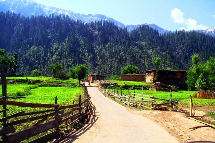 Tral