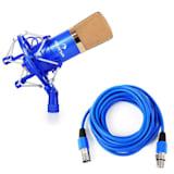 Auna CM001BG Micro condensateur voix studio XLR + 6m de câble - bleu/or