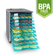 Fruit Jerky 10 voedseldroger dehydrator 800W 10 etages zwart 10 stages