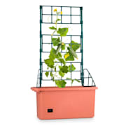 Power Planter Plant Pot 75x130x35 CM Creeper Support 3 Levels PP Transpotable