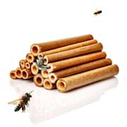 Rurki bambusowe, 70 sztuk, każda 10 cm długości, odcień drewna 10 cm