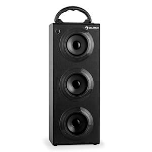 Beachboy XXL Bluetooth-Lautsprecher schwarz USB SD AUX UKW