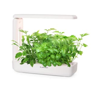 Growlt Cuisine Smart Indoor Garden 10 roślin 25W LED 2 litry
