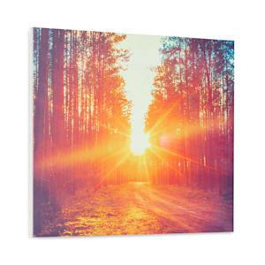 Wonderwall Air Art Infinite 300 Infrarotheizung Bild 60x50cm 300W Wand Fernbedienung