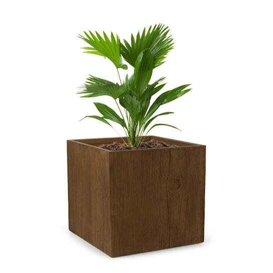 Timberflor Plant Pot 55 x 50 x 55 cm Fiberglass Indoor / Outdoor Brown