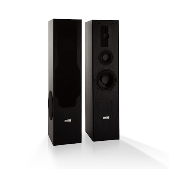 Line E 1005 Tower Speaker 3-Way HiFi Speaker 700 W max. Black
