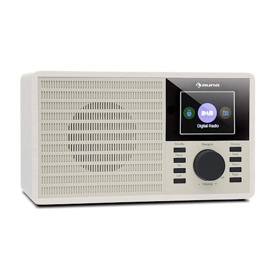 """DR-160 BT, DAB+/FM rádio, USB, AUX, 2.4"""" TFT displej, bílé"""