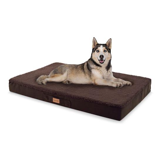 Balu, pelíšek pro psa, polštář pro psa, možnost praní, ortopedický, protiskluzový, prodyšná paměťová pěna, velikost L (100 x 10 x 65 cm)