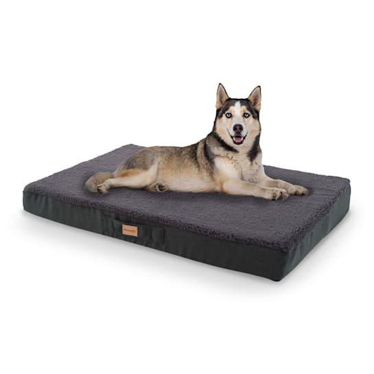 Balu Hundebett Hundekissen | waschbar | orthopädisch | rutschfest | atmungsaktiver Memory-Schaum | Größe L (100 x 10 x 65 cm)