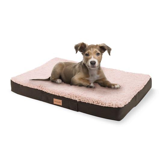 Balu Hundebett Hundekissen | waschbar | orthopädisch | rutschfest | atmungsaktiver Memory-Schaum | Größe S (72 x 8 x 50 cm)