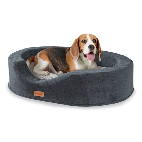Lotte Hundebett Hundekissen | waschbar | orthopädisch | rutschfest | atmungsaktiver Memory-Schaum | Größe  M (80 x 20 x 60 cm)