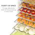 Fruit Jerky 18 Essiccatore 18 Livelli in Acciaio Inox nero 1000W