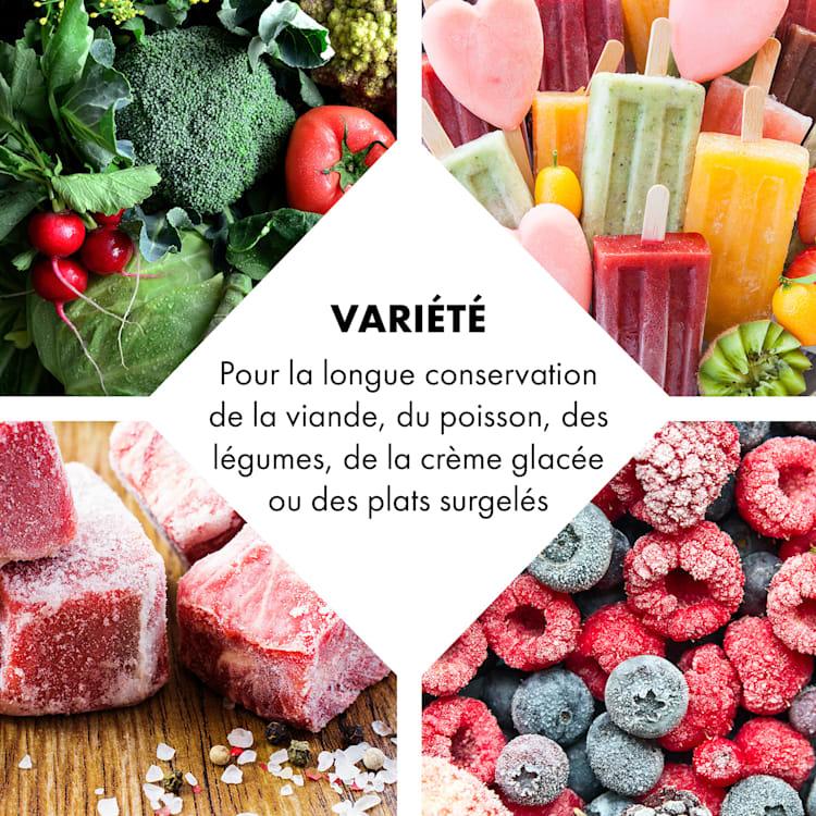 Iceblokk 80 Congélateur autonome 80L panier verrouillable A + noir Noir   78 L