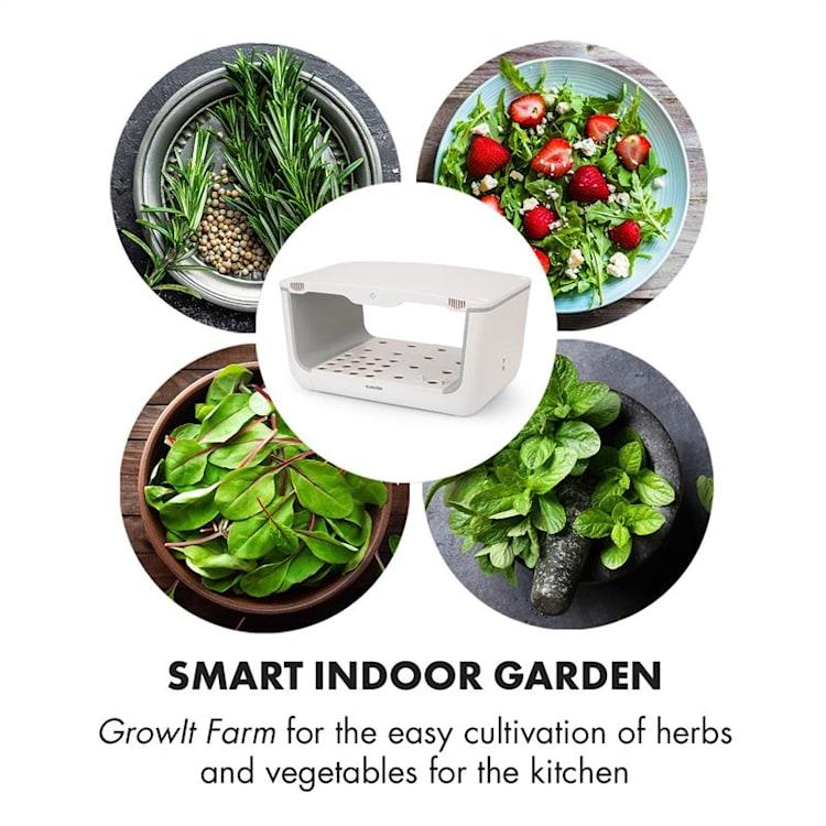 GrowIt Farm Kit de Iniciação III 28 Plantas 48W 8 L Sementes Asiáticas Solução Nutritiva