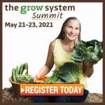 Superfood Gardening!