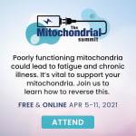 Mitochondrial Summit 2021