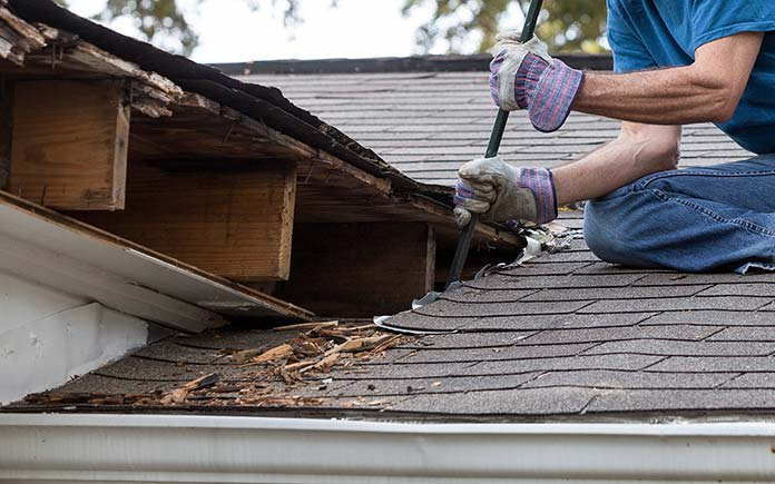 chapman neil working on mold damaged roof