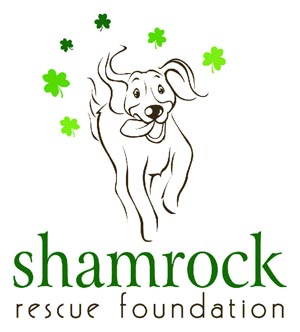 Shamrock Rescue Foundation