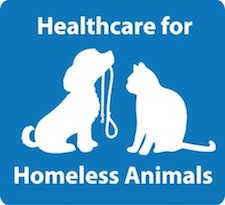 Healthcare for Homeless Animals