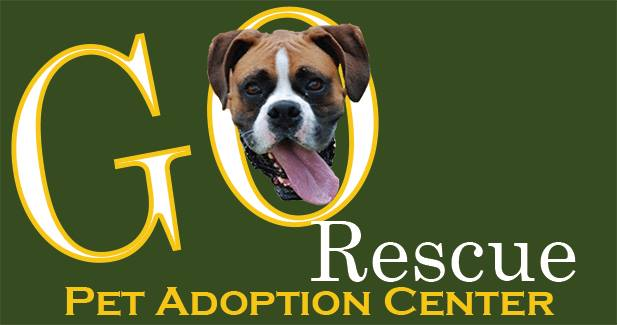 GO Rescue Pet Adoption