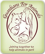Guardians For Animals