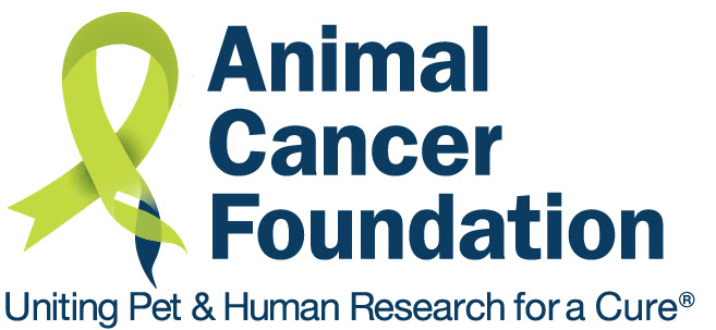 Animal Cancer Foundation (ACF)
