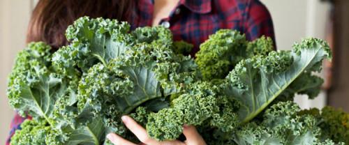 Kale: il nuovo superfood e i diversi modi per cucinarlo!