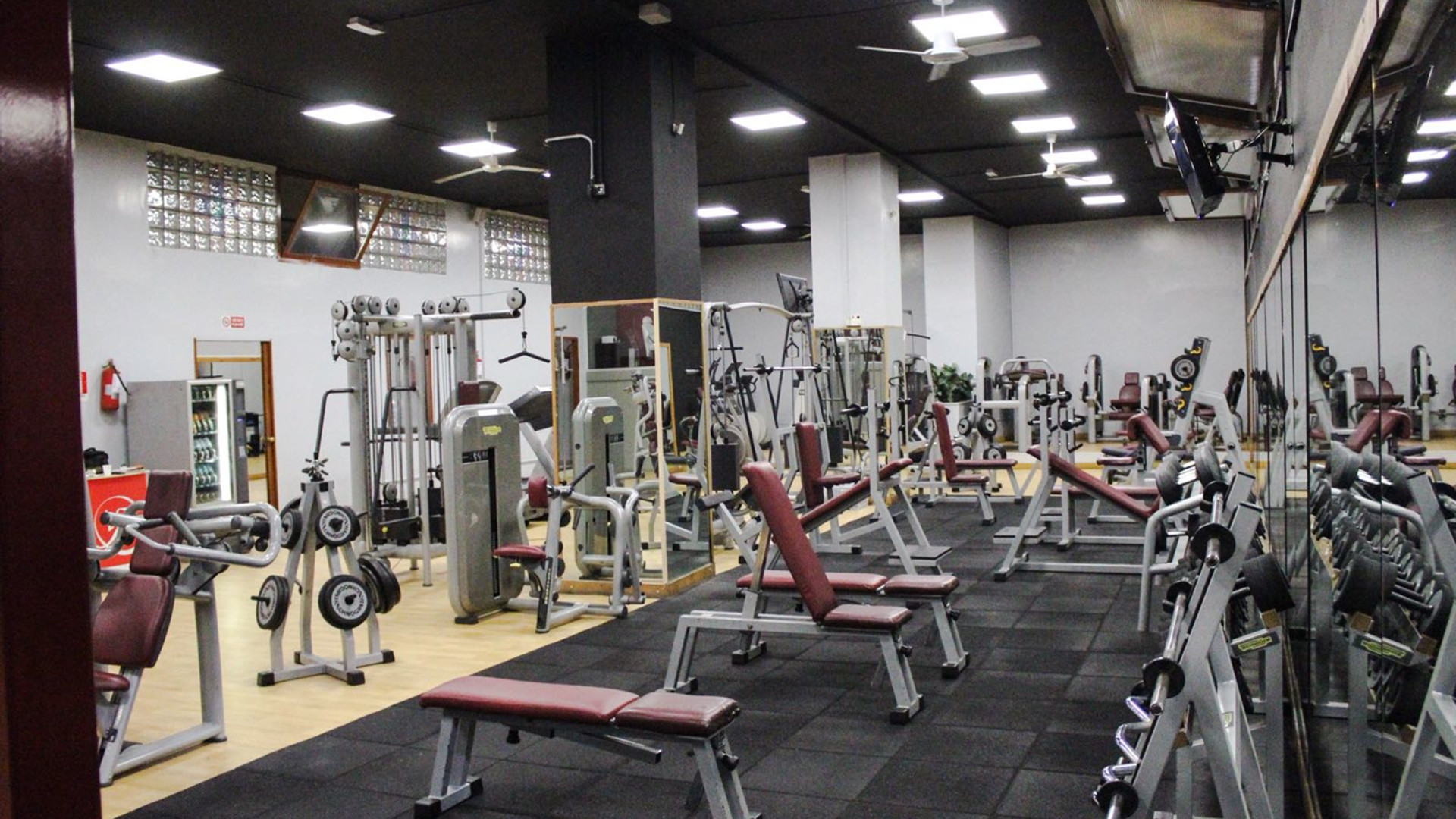 Venere Fitness Club