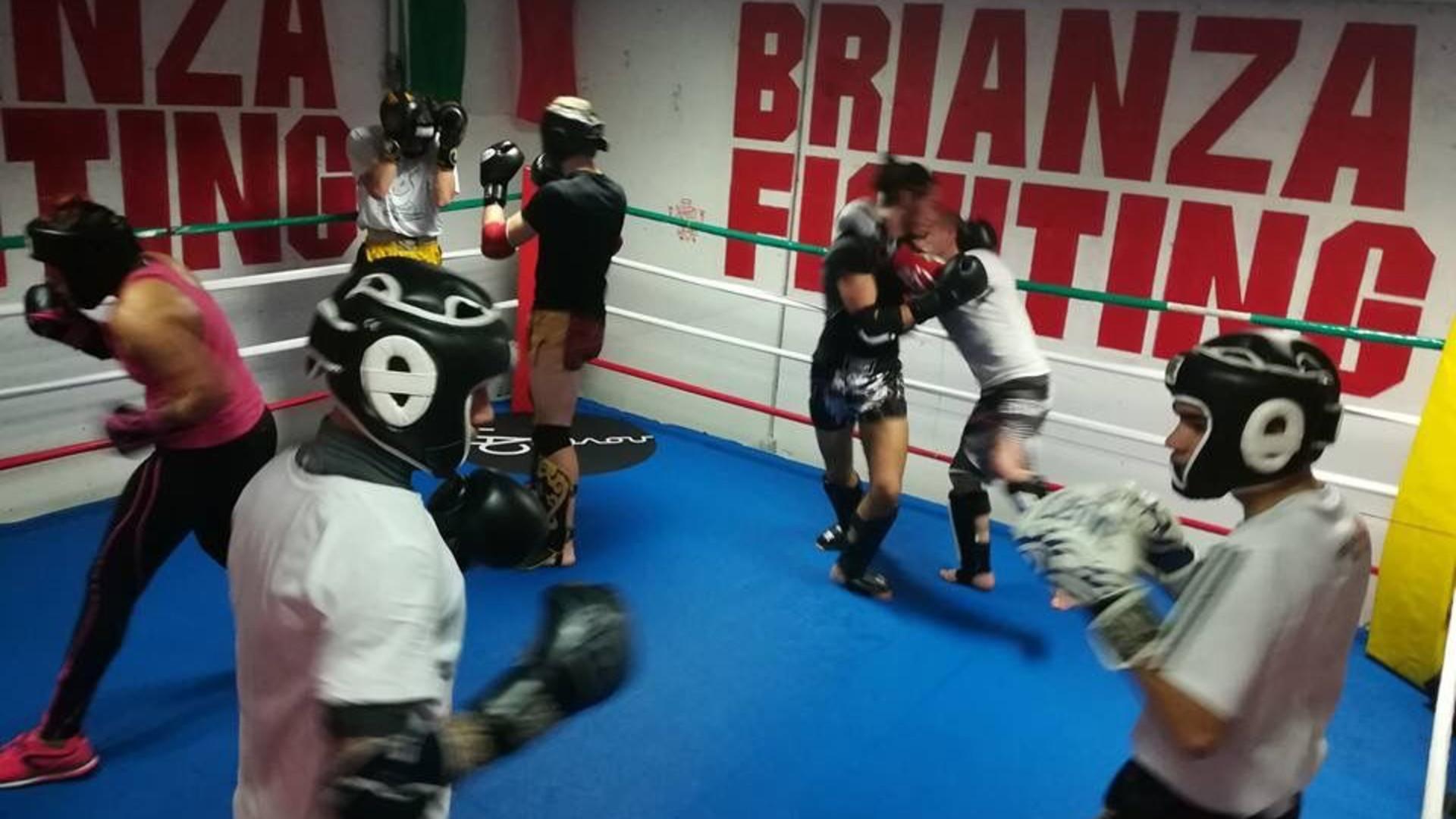 Brianza Fighting prezzi