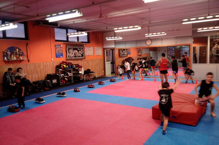 Palestra Maluma Martial Arts Frosinone