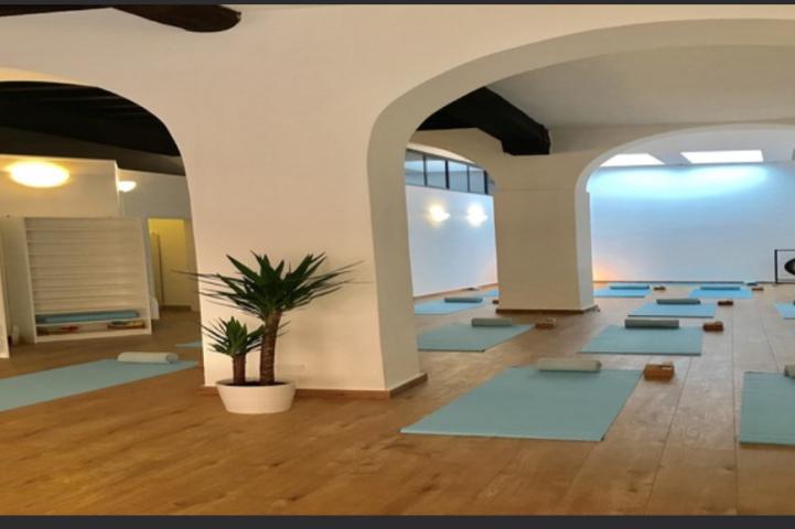 Palestra Yoga Space Cremona Cremona