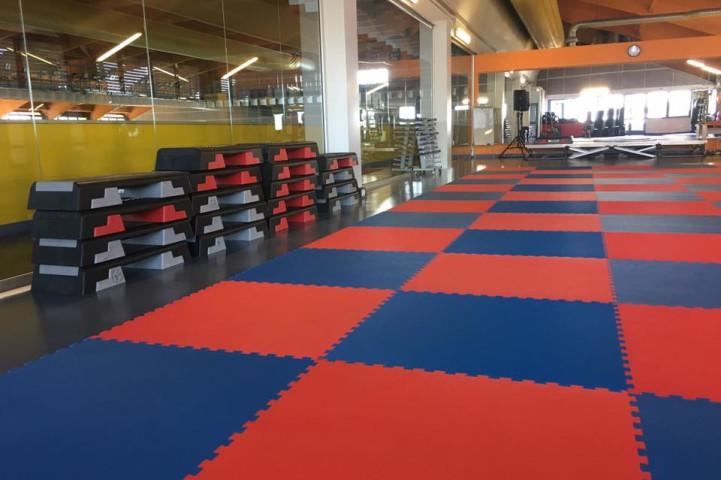 Palestra Gymnasium Academy  Novara