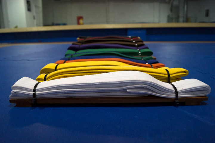 Dragon Ball School Karate