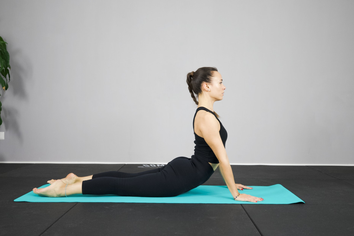 Mobilità dorsale