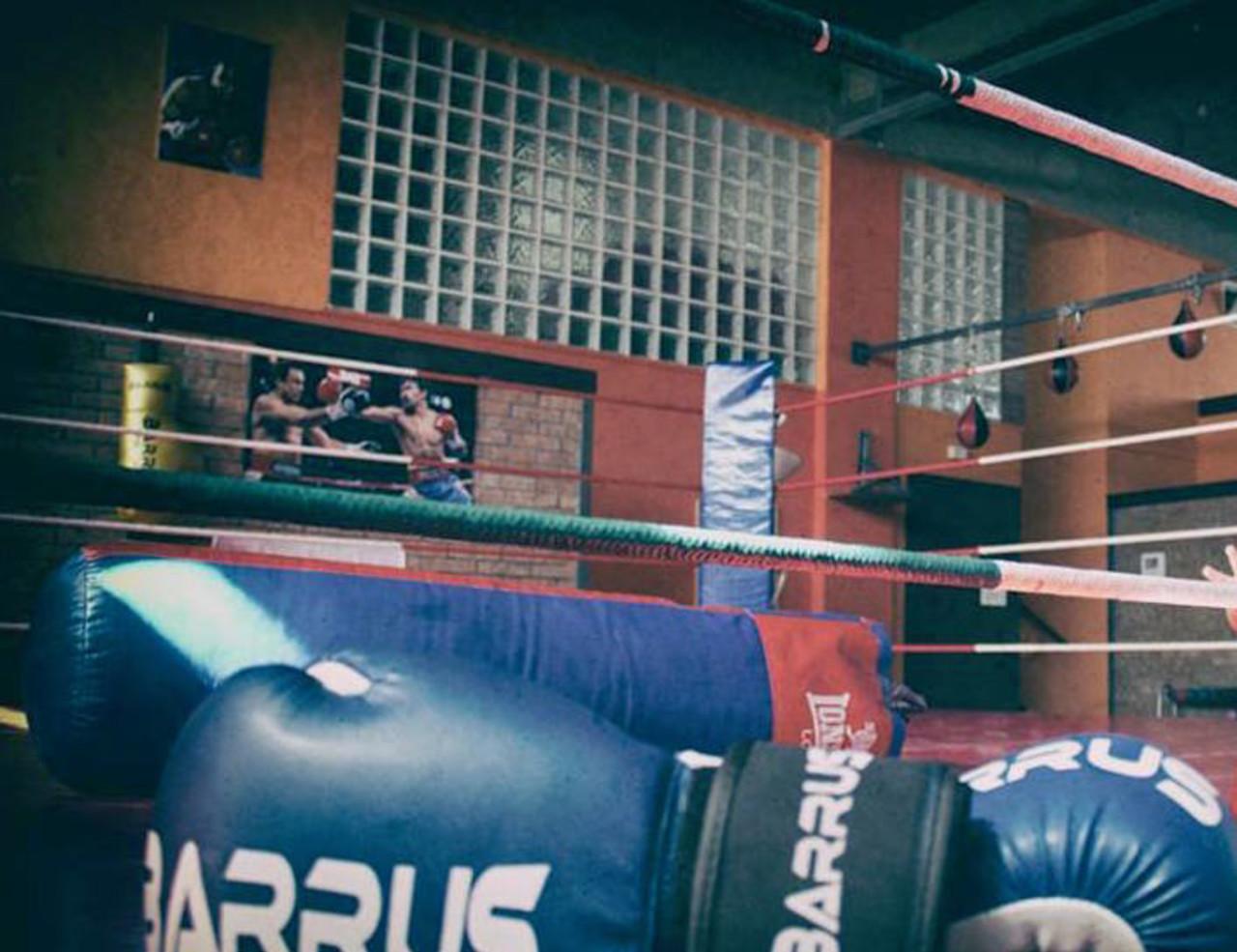 New BoxeGym
