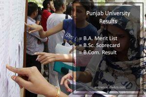 Punjab University Result , BA-BSC-BCOM Part 1 2 3 Results