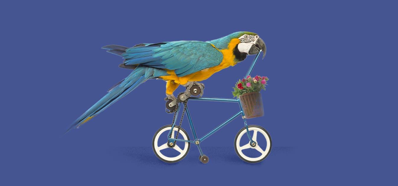 Így készítsd fel a bringád a tavaszra 🌷🚲
