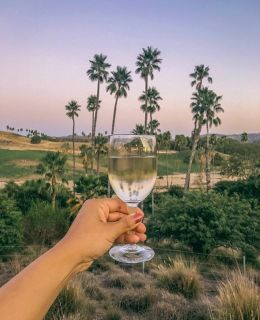 {San Diego is known for} its burgeoning craft beer scene, but sometime a cold white wine at sunset is quite fun. I actually prefer beer over wine, what about you?
