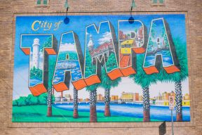 Things to do in Tampa, Florida Cover Image