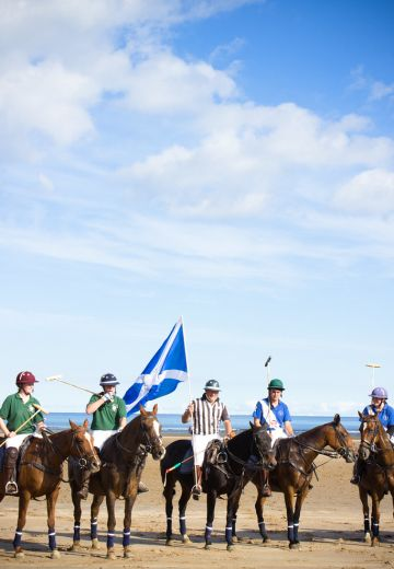 Polo on the Beach Cover Image
