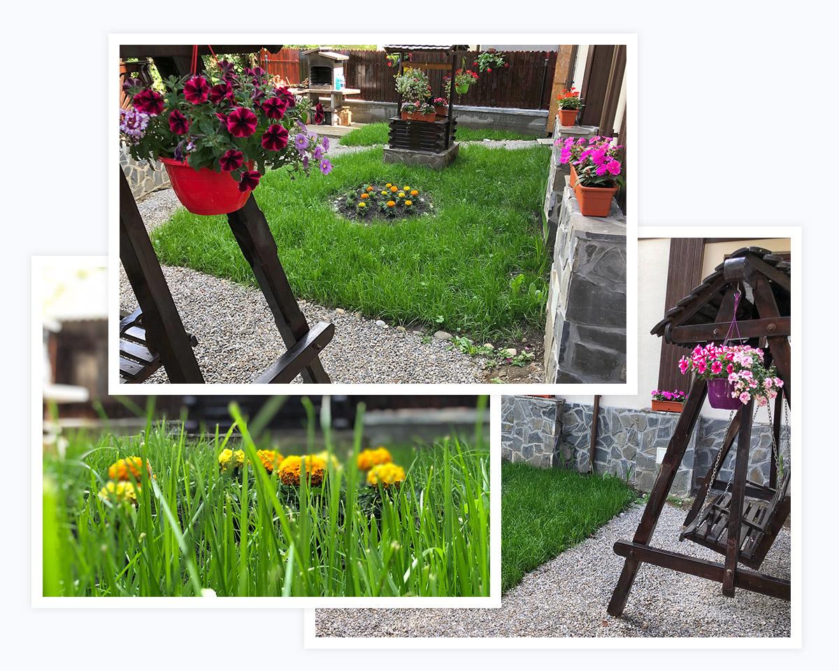 Grădină şi foişor