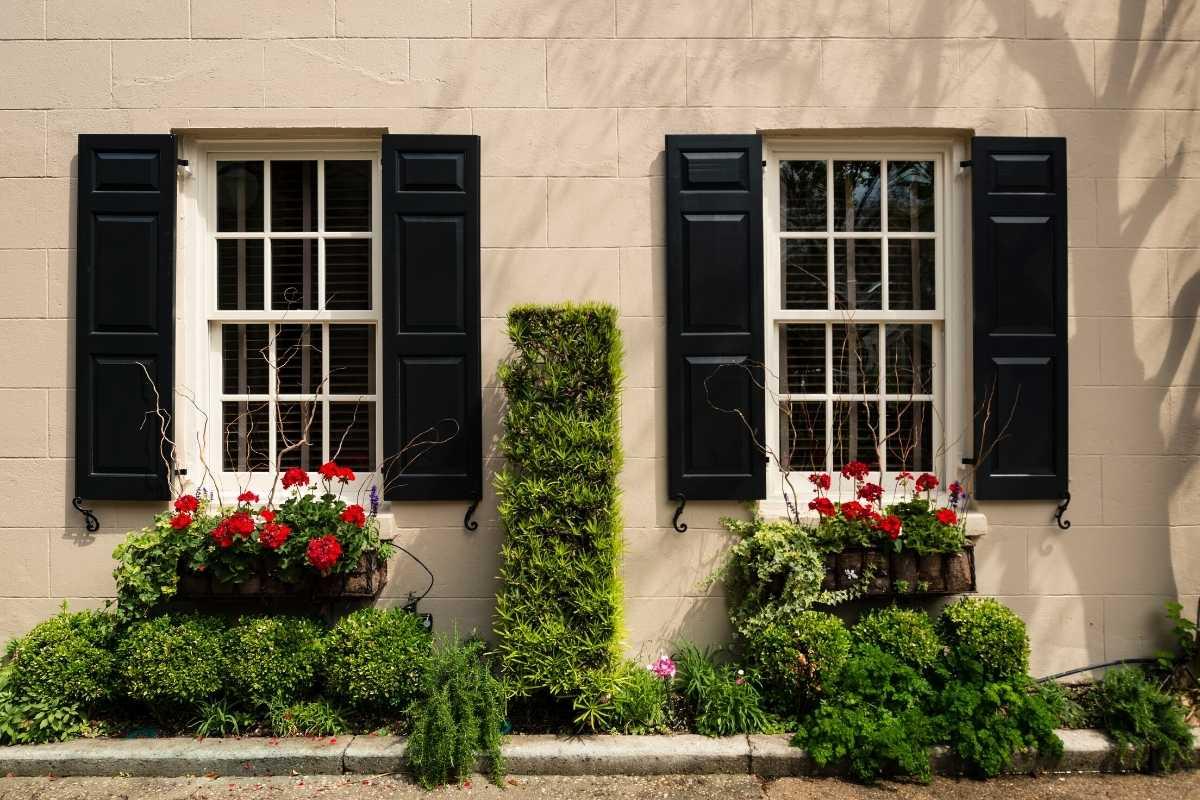 Brand new windows on double hung window