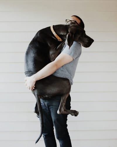 Quand on prend un chien, on veut bien sûr être le préféré de son poilu ! On s'investit donc à fond dans son éducation, sa socialisation, on le nourrit bien entendu...Ils sont gourmands nos poilus....