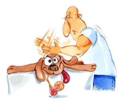 Les bienfaits du massage ne sont plus à prouver. Masser son animal de compagnie, en plus d'un suivi vétérinaire régulier, est l'assurance de le maintenir en bonne santé et même de prévenir certains problèmes.